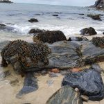 Actual Knotted Wrack 4-min